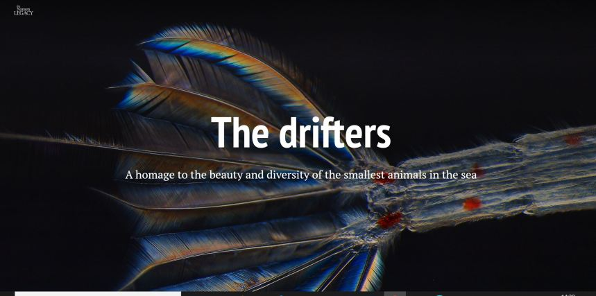 snippet of the drifters