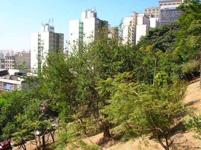 talude do patio do colégio Ricardo Henrique Cardim