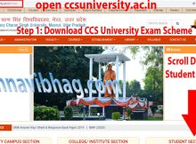CCS University Exam Date Sheet 2021 (Back Paper) Ba, Bsc, Bcom, Ma, Msc, Mcom, LLB