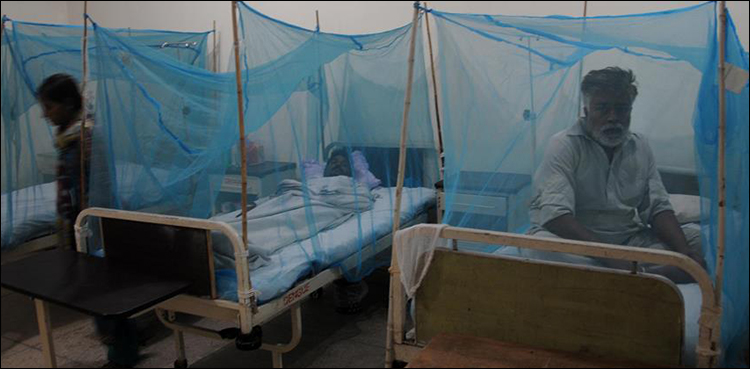 Photo of Federal authorities decides to probe into dengue outspread