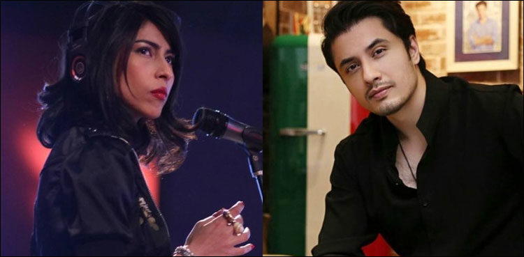 Photo of Ali Zafar data assertion in defamation case in opposition to Meesha Shafi