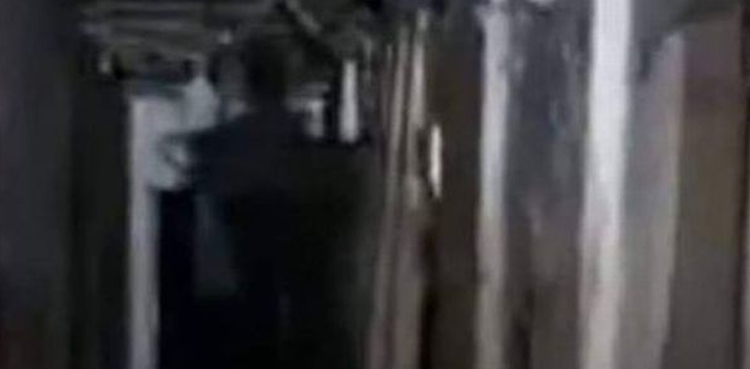 Photo of Horrible darkish determine noticed in shadows throughout reside ghost hunt