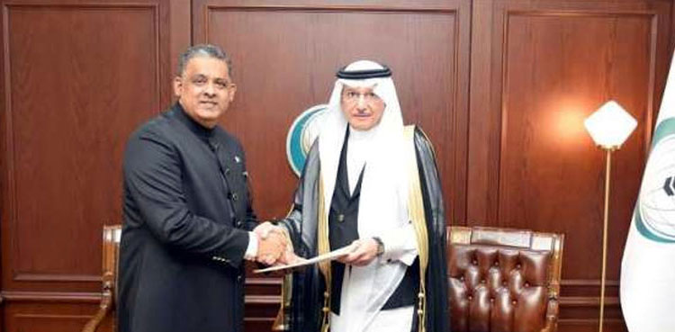 Photo of Pakistan establishes everlasting mission to OIC