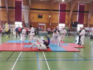 Démonstration de judo, ju-jitsu au forum des associations