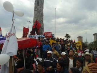 Paraguaymst
