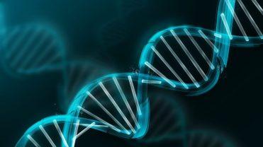 Depiction of the DNA molecule
