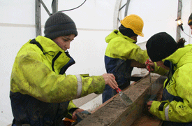 a group of scientists examining a sediment core
