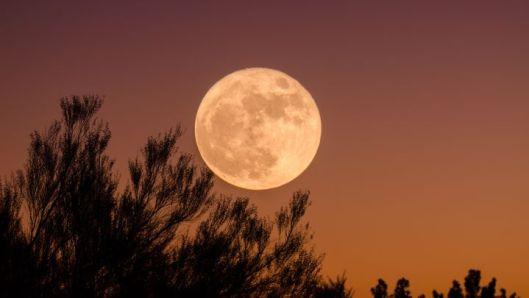 Calendario lunar de agosto 2021: ¿cuáles son las fases de la luna y cuándo  habrá luna llena este mes? - AS.com