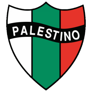 Shield / Palestinian Flag