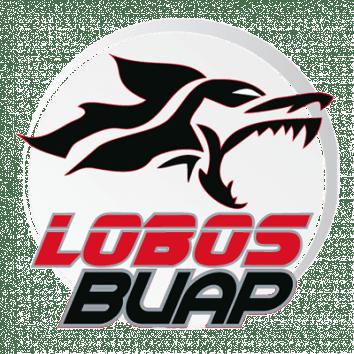 Escudo / Bandera Lobos BUAP