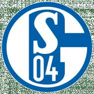 Badge/Flag Schalke 04