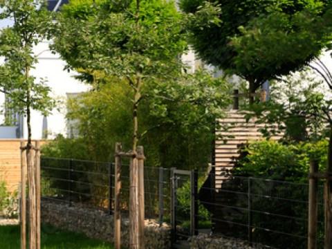 gartengestaltung obstbäume moderne gartengestaltung: mit steinen gefüllte gabionen als