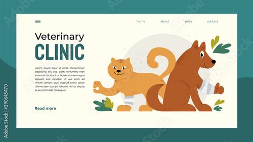 design for vet clinic pet care