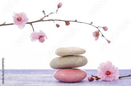 Galets Zen Et Branche En Fleur Acheter Cette Photo Libre De Droit Et Decouvrir Des Images Similaires Sur Adobe Stock Adobe Stock