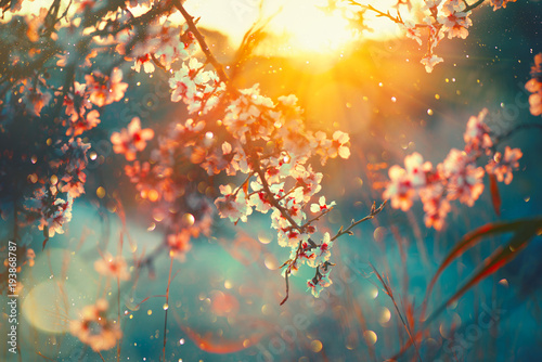 Spring Blossom Background Nature Scene With Blooming Tree And Sun Flare Spring Flowers Beautiful Orchard Buy This Stock Photo And Explore Similar Images At Adobe Stock Adobe Stock