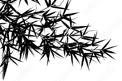 fond blanc illustration stock adobe stock
