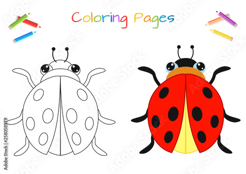 Funny Little Ladybug Beetle Copy The Picture Coloring Book Educational Game For Children Cartoon Vector Illustration Buy This Stock Vector And Explore Similar Vectors At Adobe Stock Adobe Stock