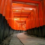 Orange gates KyotoFushimiInariLarge https://www.flickr.com/photos/balintfoeldesi/