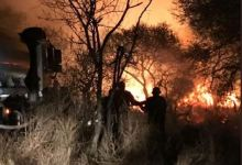 Photo of Fire ravages Tsavo park in Kenya: wildlife and vegetation at risk