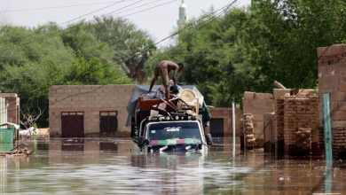 Photo of WFP assists states in Sudan suffering devastating floods