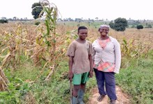 Photo of Meet the maize farmer who thrives on ashes of destroyed forest