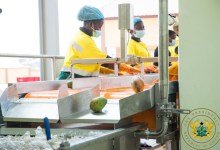 Photo of 1D1F: Bodukwan Multi-Fruit Processing Factory commissioned
