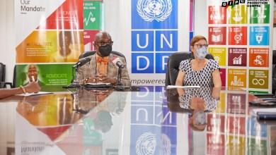GIPC, UNDP