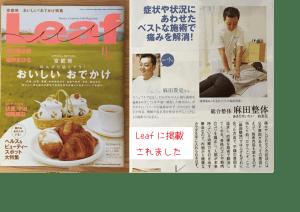 雑誌掲載Leaf