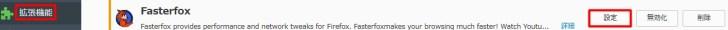 Fasterfox-setting