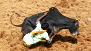 Corredor y toro