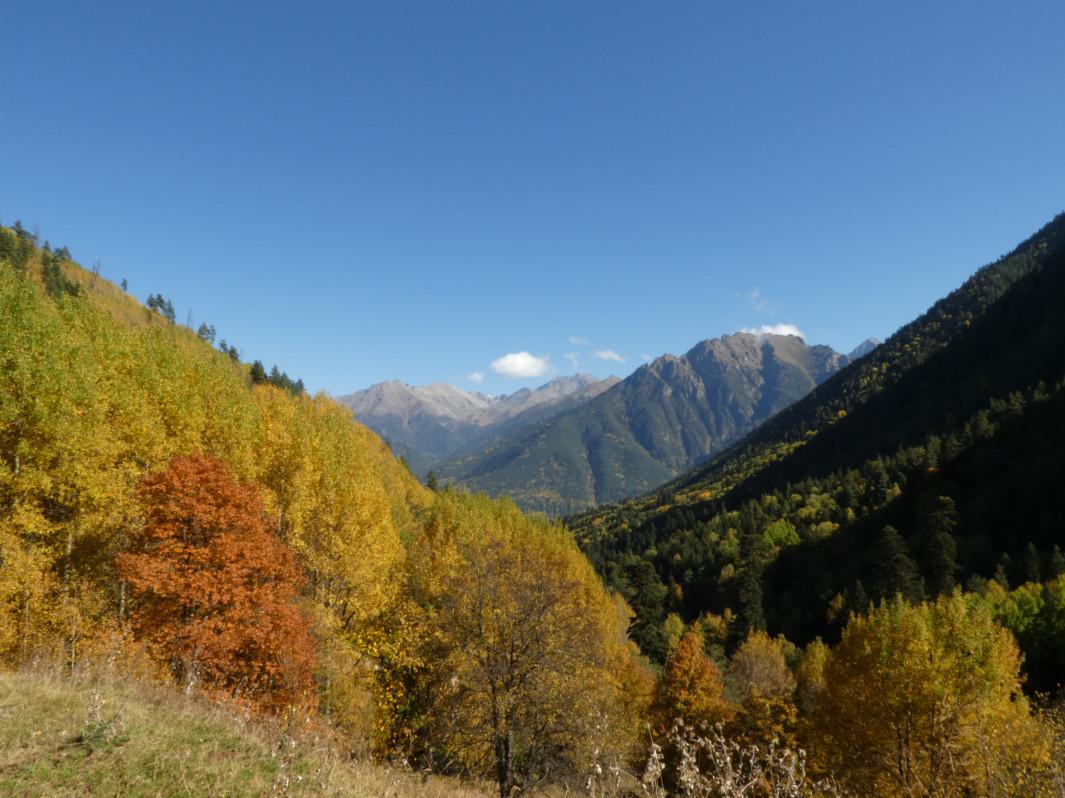 Trekking Caucaso Ruso - Teberda Valle Mukhu