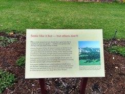 5-rumput-australia-yang-lasak