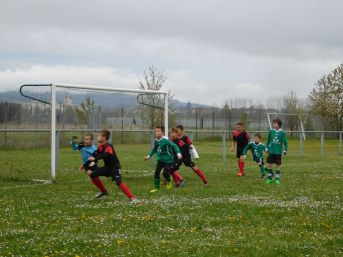 as andolsheim U 11 avenir vauban 00005
