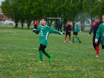 as andolsheim U 11 avenir vauban 00015