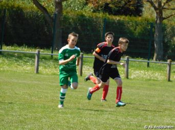 as andolsheim U 13 A Vs Avenir Vauban 00013