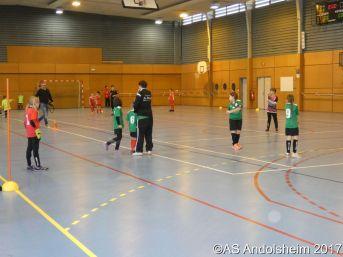 AS Andolsheim Tournoi en salle Pichounes Débutants 2018 00041