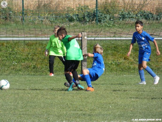 as andolsheim U 11 rentrée du foot 2018 00047