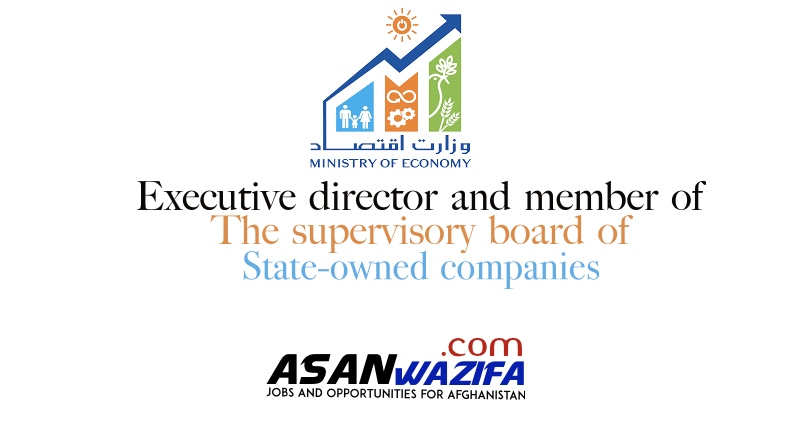 Executive director and member of the supervisory board of state-owned companies