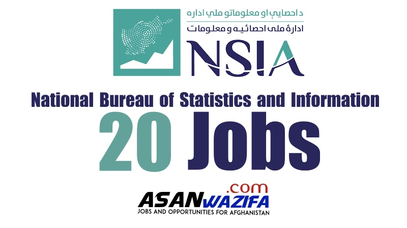 20 Jobs at National Bureau of Statistics and Information ( NSIA )