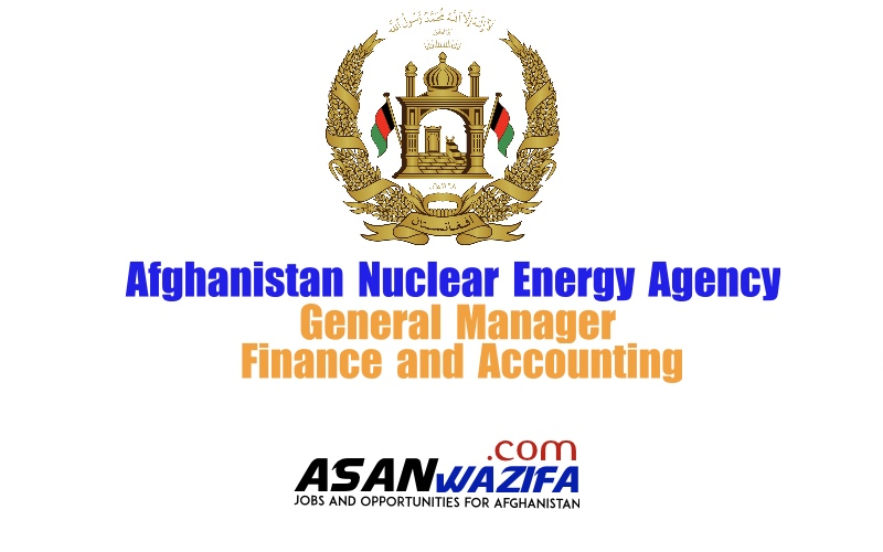 General Manager of Finance and Accounting ( ANEA )