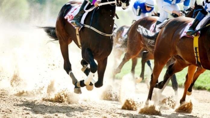 An Emirati rider received the most severe sanction in horse riding history for doping his horse (Shutterstock)