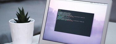 Eight useful commands on our Mac: cleaning of app files, battery charging cycles and more
