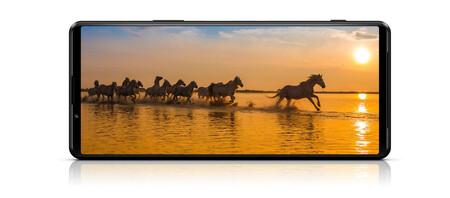 Sony Xperia 1 Iii Display