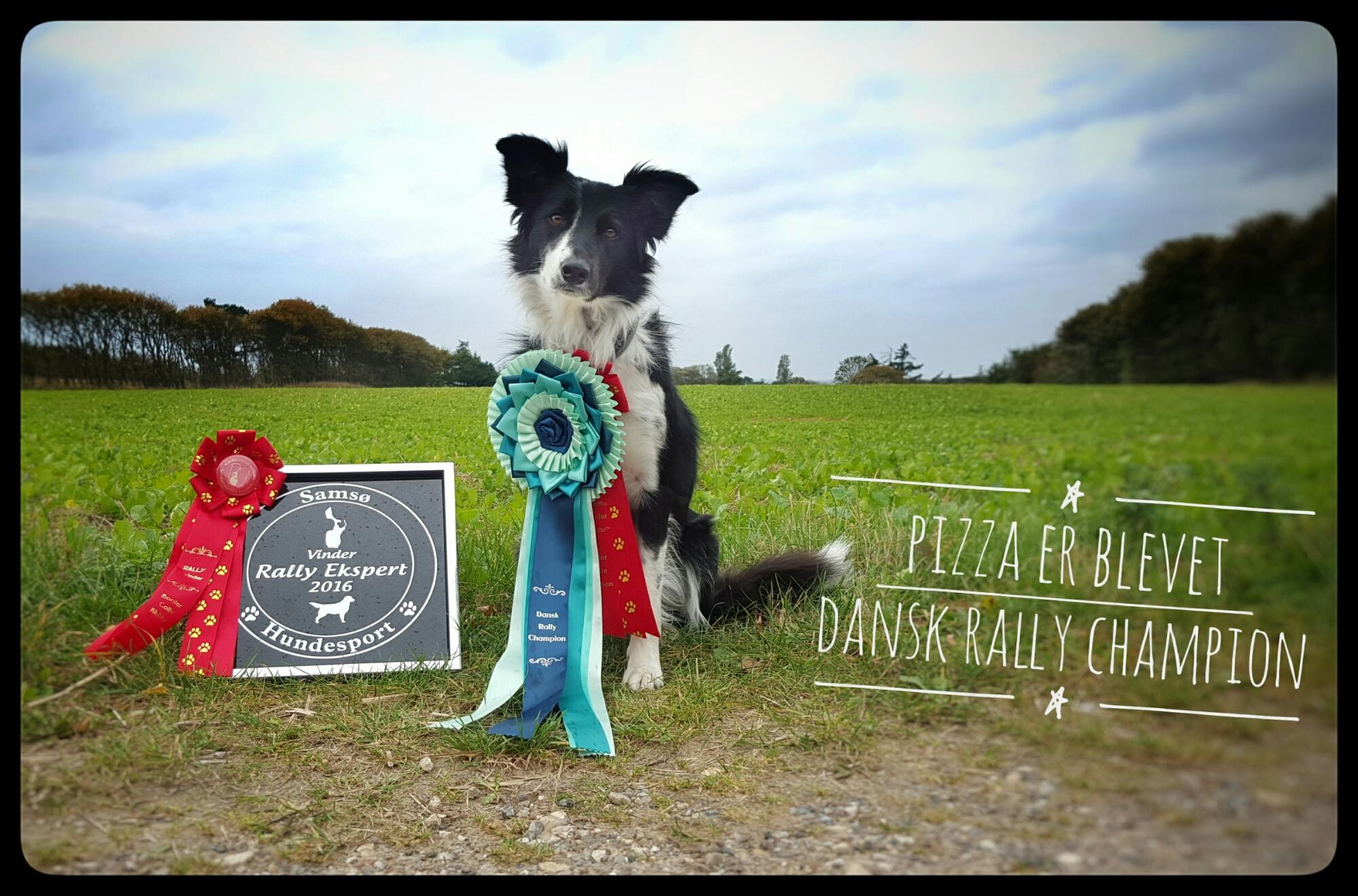 Dansk Rally Champion – Pizzas første championat