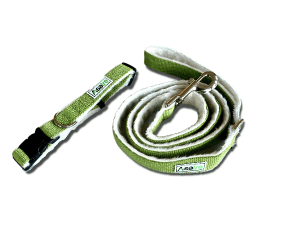 Green Asatre Collar Leash Set