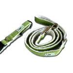 Green Asatre Collar Leash Set