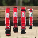 Asatre Hemp Dog Collars - Red
