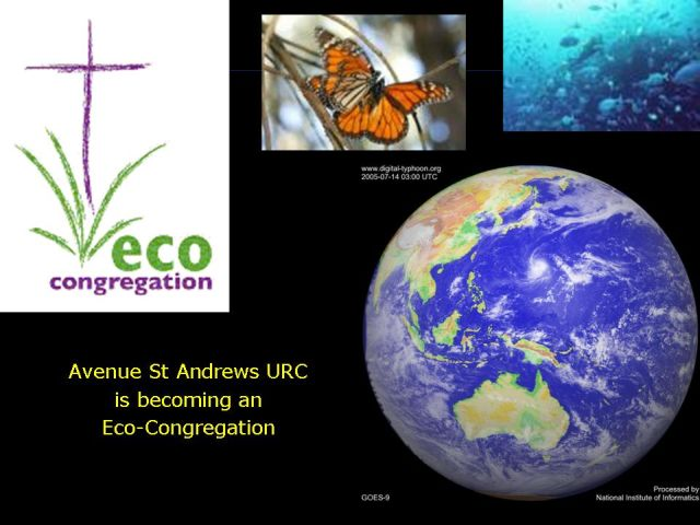 Avenue St Andrew's Eco-congregation