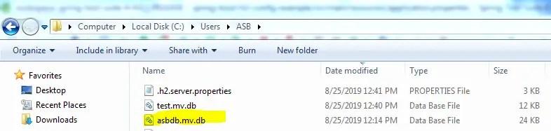 H2 DB Files