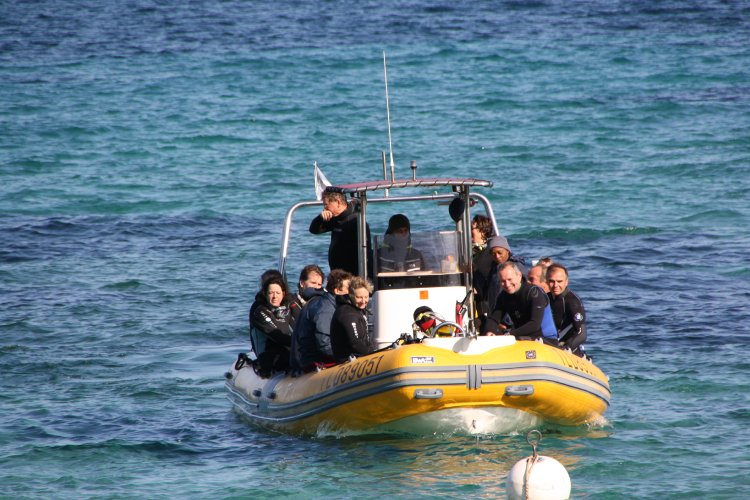 cic-plongee-2011-246